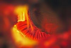 Kyss av branden Arkivfoton