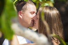 Kyss bland träd Royaltyfri Foto