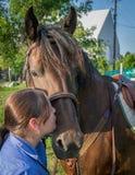 Kyssa min häst Arkivfoto