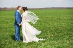 Kyssande lyckligt gift par på fält Royaltyfria Bilder