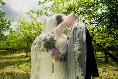kyssande park för brudbrudgum Royaltyfri Foto