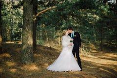 kyssande park för brudbrudgum parnygifta personer brud och brudgum på ett bröllop i naturgräsplanskog kysser fotoståenden arkivfoto