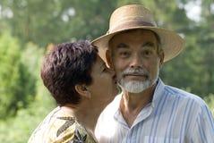 kyssande pensionär för par Arkivbild
