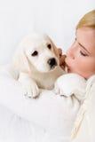 Kyssande vitvalp för kvinna av Labrador arkivbilder