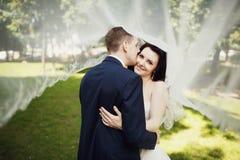 Kyssen av bruden och brudgummen under brud skyler Arkivfoto