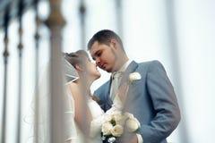 kysstennder Fotografering för Bildbyråer