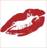 kyssvektor Arkivfoton