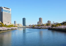 Kyu-Yodo Rivier, Osaka, Japan tijdens de lentetijd Stock Afbeelding