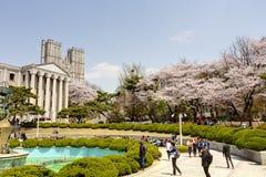 Kyung Hee大学,汉城校园,韩国 免版税库存照片