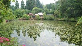 Kyushuu, Japan. Lake in prefecture Fukuoka, Japan stock images