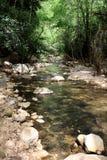 Kziv小河,以色列 免版税库存图片