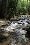 Kziv stream, Israel. Nahal Kziv (Kziv stream) in the Upper Galilee, Israel Stock Photo