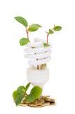Lámpara ahorro de energía con la planta de semillero verde foto de archivo