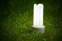 Lámpara ahorro de energía en la hierba fotografía de archivo libre de regalías