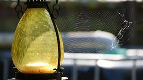 Lámpara con la web de araña en viento almacen de video