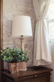 Lámpara de cabecera y planta verde en dormitorio Fotografía de archivo libre de regalías
