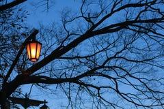 Lámpara de calle anaranjada Foto de archivo libre de regalías