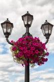 Lámpara de calle con las flores imagen de archivo libre de regalías