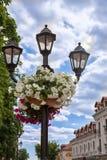Lámpara de calle con las flores fotografía de archivo
