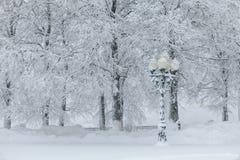 Lámpara de calle cubierta en nieve profunda Imagen de archivo
