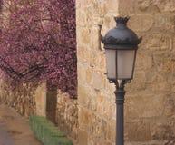 Lámpara de calle del estilo del vintage con la flor de cerezo, Toledo fotos de archivo