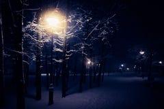 Lámpara de calle del invierno de la noche con nieve que cae Linternas en parque de la tarde Imagen de archivo libre de regalías