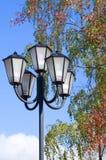 Lámpara de calle en parque Imagen de archivo libre de regalías