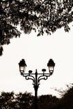 Lámpara de calle en un parque Imagen de archivo libre de regalías