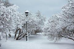 Lámpara de calle en un parque de la nieve Fotografía de archivo