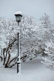 Lámpara de calle en un parque de la nieve Fotos de archivo libres de regalías