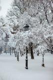 Lámpara de calle en un parque de la nieve Fotos de archivo