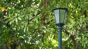 Lámpara de calle ligera en la naturaleza verde en el fondo del parque Fotos de archivo