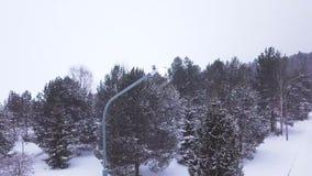 Lámpara de calle sola en nevadas clip Vista superior de la lámpara de calle simple que brilla oscuro en el camino en parque coníf metrajes