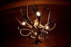 Lámpara de la cornamenta Imagen de archivo libre de regalías