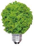 Lámpara de la ecología Foto de archivo