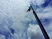 lámpara de la rama Foto de archivo libre de regalías