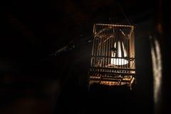 Lámpara de madera de la jaula de pájaros Fotos de archivo