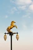 Lámpara de oro del caballo Imágenes de archivo libres de regalías