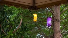 Lámpara debajo del árbol Imagen de archivo libre de regalías