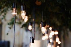 lámpara eléctrica del vintage retro del centro de flores Fotografía de archivo