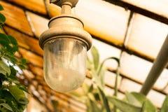 Lámpara en jardín botánico lámpara eléctrica vieja en invernadero imagenes de archivo