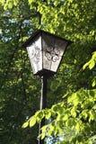 Lámpara en un jardín de la cerveza Imagen de archivo
