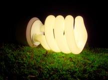 Lámpara fluorescente Fotografía de archivo libre de regalías