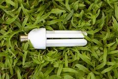 Lámpara fluorescente compacta sobre fondo de la hierba Foto de archivo