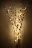 Lámpara hecha de braches con la luz llevada Fotos de archivo libres de regalías