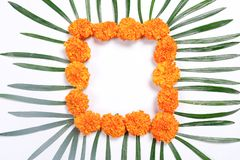 Lámpara india del festival Diwali, de Diwali y rangoli de la flor fotos de archivo libres de regalías
