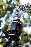 lámpara, linterna, luz, luz artificial, top de la piña Foto de archivo libre de regalías