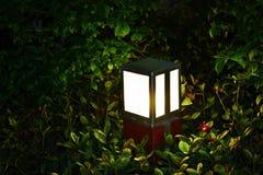 Lámpara llevada del césped Fotografía de archivo libre de regalías