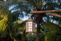 Lámpara para la ejecución al aire libre de la iluminación en árbol en el jardín Foto de archivo libre de regalías