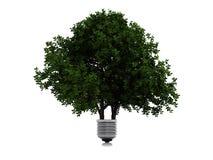 Lámpara verde Imagenes de archivo